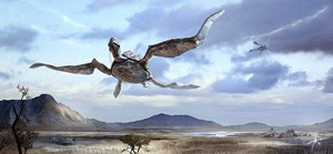 1024x473_16502_Turtle_shuttle_2d_landscape_concept_art_sky_hills_turtles_fantasy_flying_creatures_picture_image_digi
